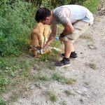 Tierschutz Hund Rumänien Baustelle