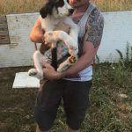 Tierschutz Welpe Rumänien Baustelle